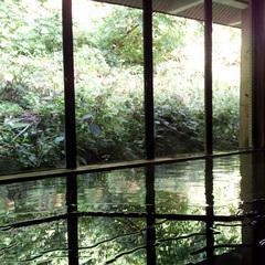 素泊まり/足元で湧き出る源泉!7つの温泉湯めぐり三昧【現金特価】
