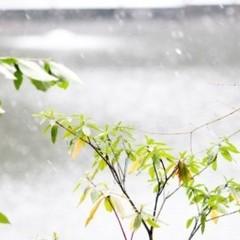 ☆シングル☆素泊まりプラン◆大浴場完備◆バイキング朝食無料◆駐車場無料◆Wi-Fi完備◆