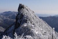 【自然体験】西日本最高峰石鎚登山ロープウェイで一気に標高1300mへ★二食付き★