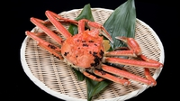 【600gコース】タグ付き越前蟹を堪能。生蟹ひとり1杯&蒸し蟹シェア。お好みで増量もできます!