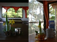 3名〜8名 四万十川河口、絶景の秘湯!貸切家族風呂と1泊朝食付き宿泊プラン。