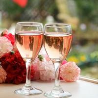 【楽天限定】春のレディースプラン♪本場仕込みのフレンチ♪伊豆みかんワイングラスサービス♪♪Wi-Fi