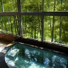 『南海フェリー(和歌山⇔徳島)タイアップ』ヒスイ色に輝く吉野川を眺めてのんびり<朝食付>