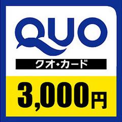 【QUOカード3,000円付】◇出張応援◇ビジネスプラン