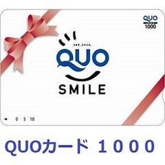 【楽天ポイント10倍!!&QUOカード1000円付】★☆超豪華獲得プラン☆★
