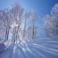 【Enjoy蒜山】ひるぜんキッズスノーパークで冬満喫♪お子様雪遊び応援プラン♪1泊2食ジンギスカン