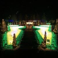 【クリスマスにもおススメ】光と花が織りなす世界へ♪とっとり花回廊×ヒルズの特別ディナー