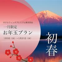 【Season】2018初セール!新春特別お年玉プラン -5311