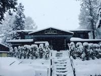 【お先でスノ。】スキー場割引券あり 冬を楽しむためのプラン