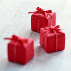 【お誕生日や記念日のお祝いに♪】大切な日を素敵に彩る≪ 豪華7大特典 ≫で特別な思い出をつくろう!