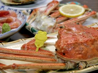 【本物保証】日本海の幸を食す♪越前がに大満足プラン!!《1泊2食付》【現金特価】
