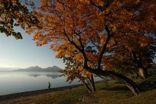 【素泊まり】22名宿泊可能洞爺湖畔プライベートな大邸宅8500坪