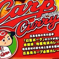 【食事無し】 ◆◆カープカレー付プランでございます◆◆ (1名様用)