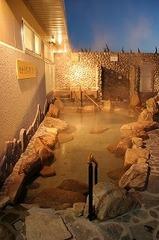 【世界に誇る遺産キャンペーン限定プラン】【男女共用ドミトリー】源泉掛け流し天然温泉入浴付き♪