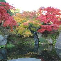 【箱根旅行にオススメ!】箱根美術館で芸術を楽しむ♪箱根美術館鑑賞券付き特典プラン