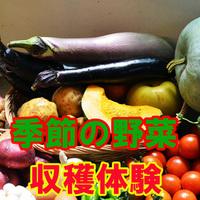 【野菜収穫体験】収穫した野菜はお土産に♪◆手作り豆腐会席を味わう!スタンダード≪2食付≫