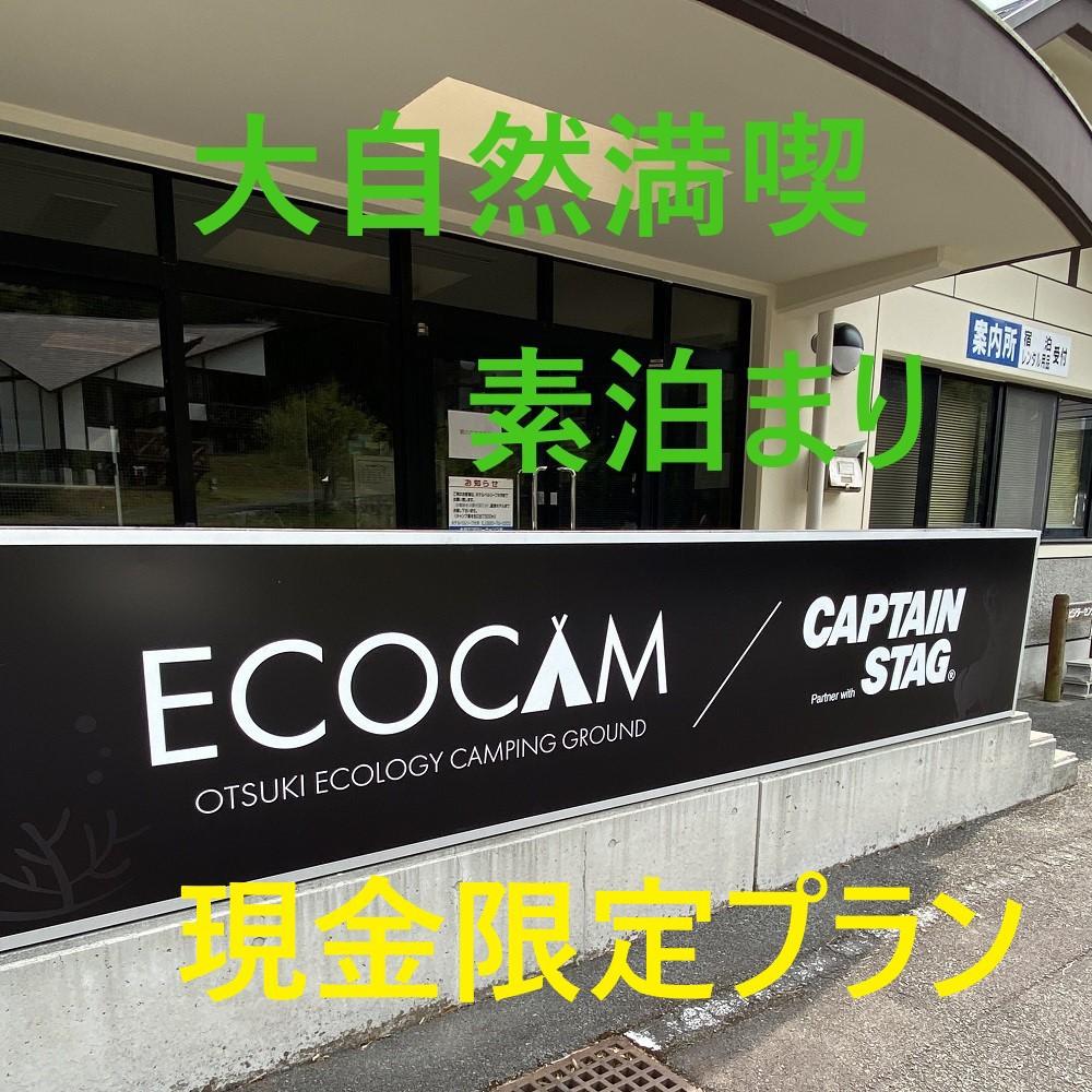 大月エコロジーキャンプ場 image