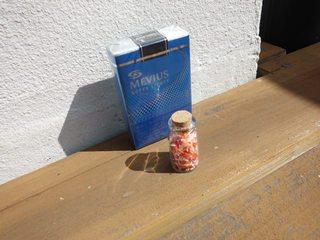 【現金特価】  珊瑚の瓶詰め付プラン