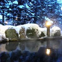 【スタンダード】遊びいっぱい♪豊富な自然体験!森の中の露天風呂で天然温泉美人の湯を堪能/2食付