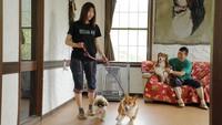 【大型犬のワンちゃんも大歓迎】食事もお部屋もワンちゃんと一緒◆1家族4頭までOK◆<2食付>