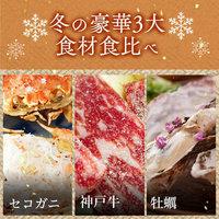 【さき楽30】≪1日3室限定≫冬の贅沢3大食材食べ比べ!旬の牡蠣+セコガニ+和牛会席<12月〜3月>