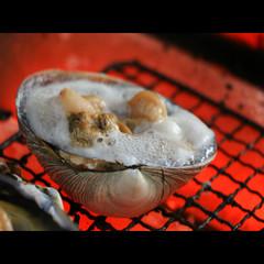 【某番組でも紹介☆】朝獲れの新鮮魚介!寺下食堂定番の寺下定食を味わう♪[1泊2食付]【現金特価】