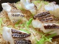 【春プラン】淡路島の「桜鯛」を贅沢に!鯛しゃぶ・鯛めしに舌鼓♪(4・5月限定)