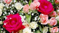 ◆記念日◆特別な日のご旅行に☆サプライズケーキでお祝いしよう