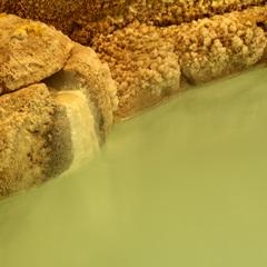 【湯めぐり温泉三昧】自家源泉の温泉を満喫!100%源泉かけ流し♪≪1泊2食≫