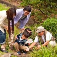 【自然案内人と、春の生き物を探しに行こう】「楽しみながら、自然を学ぶ!」 旅育プラン (夕朝食付)