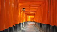 【観光タクシー6時間コース&昼食付プラン】☆今しかない京都の魅力を楽しもう☆