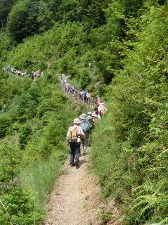 世界遺産『熊野古道』の自然を満喫♪BBQオプションあり!【朝食付プラン】