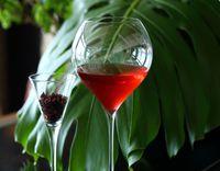 フレンチ料理とお酒のマリアージュ ペアリングディナープラン(2食付)