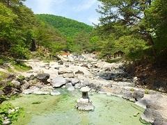 【スタンダード】1泊2食バイキング☆なんと飲み放題付き☆草津温泉で湯ったり旅♪