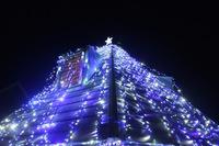 【カップル限定】 しいたけクリスマス! しいたけが彩る聖なる夜を体験★【お得プラン】