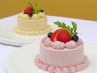 【ドッグ アニバーサリー】 愛犬用ディナー・ケーキ付 お祝いプラン/朝食付