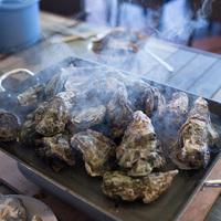 淡路島でカキ小屋気分☆鳴門海峡から直送☆蒸し牡蠣食べ放題の1泊夕食付きプラン(朝食なし)