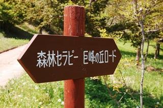 フフ山梨セラピープラン 〜五感で愉しむ!森林セラピー体験付き 〜
