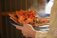 ●★県漁連タグ付!!ブランド越前カニプラン(茹で蟹1人1杯付)♪
