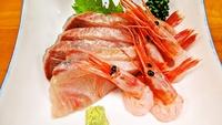 【当館人気の2食付プラン】敦賀の山海の恵みと家庭的な料理でおもてなし。(現金特価)