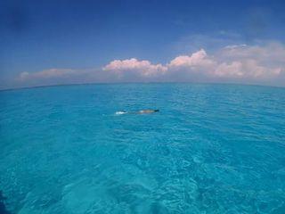 【ファミリー】【体験】【グループ】宮古島の海でいっぱい遊ぼう(ボートシュノーケリング)