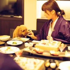 【七五三お祝いプラン♪】愛犬の長寿祈願◎ささみジャーキー入り千歳飴袋プレゼント!(お部屋食)期間限定