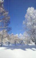 感動の樹氷の世界★生まれ変わる峰の原高原スキー場となり