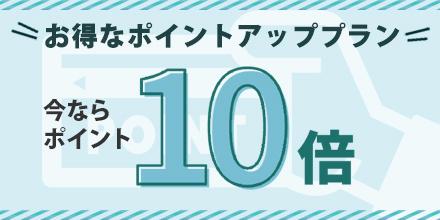 【楽天限定】★ポイント10%★泊まって貯めるお得プラン(素泊まり)