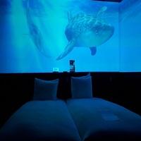 ☆インスタ映え☆《1日1室限定》「美ら海ルーム(ツイン)」で沖縄の海を体感(素泊り)