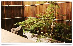 京町家お宿・花の庭写真