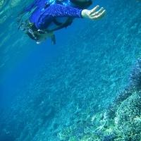 サンゴでできた真っ白な奇跡の島!バラス島半日シュノーケル滞在中1回付プラン (朝食付)