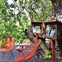 心地よい風と大自然の香りを感じながら「浦内川ジャングルクルーズ」で楽しもう! 朝食付