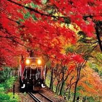 秋の紅葉シーズン!アクセス便利!HIVEで宿泊プラン(朝8時からお荷物お預かりできます)【朝食無料】