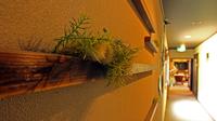 期間限定特典付■初夏の風物詩・ホタルに会いに行こう■ちどりの定番割烹・松倉-matsukura-